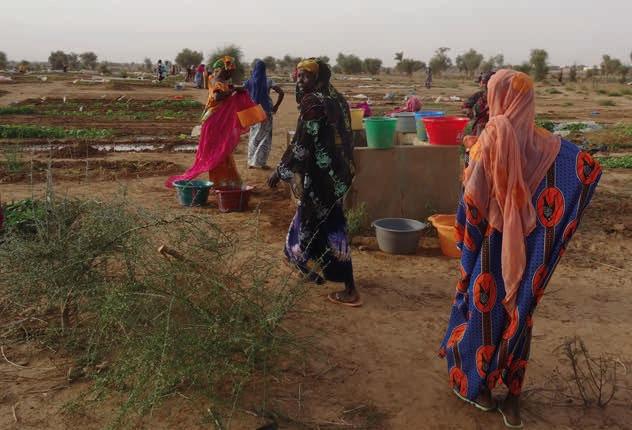 water voor vrouwen - voeding en inkomsten voor families