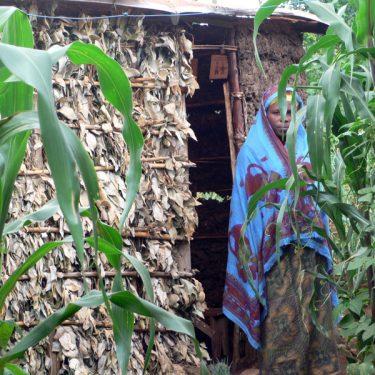 Rwandan widow -support with housing