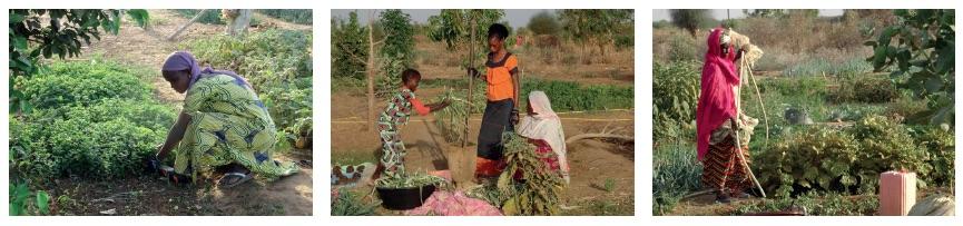 Futa-45 vrouwen - water- landbouw - gezond eten 02